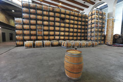 Vaten Wijn in een Wijngaard Stock Foto
