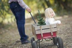 Vater Pulling Blonde Girl im Lastwagen mit Weihnachtsbaum Stockfotografie
