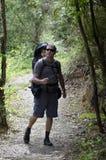 Vater-und Kind-Wandern Stockbild