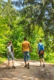 Vater und Kinder, zum durch das Holz zu wandern Stockbilder