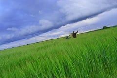 Vater und Sohn auf einem Gebiet des Weizens vor Regen Lizenzfreie Stockfotos