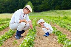 Vater und Sohn, die auf ihrem Gehöft im Garten arbeiten Lizenzfreie Stockfotos