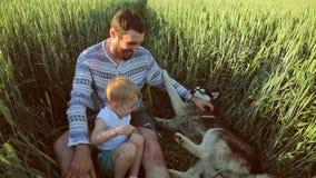 Vater und Sohn, die mit einem Hund auf dem Weizenfeld spielen Der Vatertags-Familienkonzept stock video