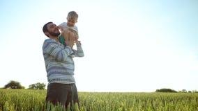 Vater und Sohn, die mit einem Hund auf dem Weizenfeld spielen Der Vatertags-Familienkonzept stock video footage