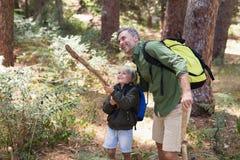 Vater und Sohn, die Natur beim Wandern im Wald genießen Lizenzfreie Stockbilder