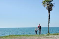Vater und Sohn stehen mit ihren Rückseiten vor dem hintergrund einer hohen Palme, eines Meeres und eines blauen Himmels stockbilder