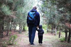 Vater- und Sohnweg im Koniferenwald unter den Kiefern Das Konzept von Familienwerten, Wanderung stockbilder