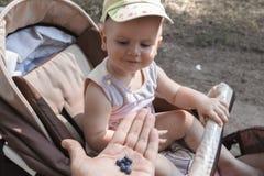 Vati bietet wilde Beeren dem Kind an, frisch, gesund und voll von den Vitaminen lizenzfreie stockfotografie