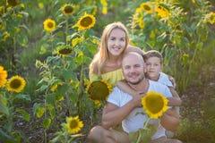 Vati mit dem Sohn, der auf einem Gebiet von Sonnenblumen umarmt Sohnumarmung sein Vater auf einem Gebiet von Sonnenblumen stockbilder