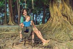 Vati und Sohn, die auf einem alten Schwingen vor dem hintergrund der Wurzeln des Baums schwingen stockbilder