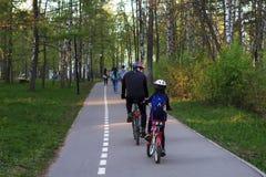Vati und Tochter auf Fahrrädern im Park, hintere Ansicht lizenzfreie stockfotografie