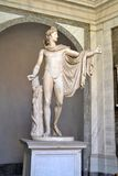 Vatican City Museum. Statue in Vatican City Museum Royalty Free Stock Photos