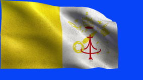 Vatican City State - Flag of Vatican, Vaticanian flag - LOOP stock video