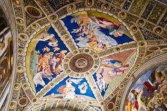 Vatican Museums. Painted ceiling in the Vatican Museum Royalty Free Stock Photo