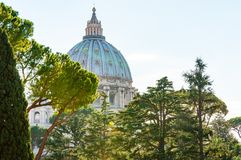 The dome of the Papal Basilica of St. Peter in the Vatican or simply St. Peter`s Basilica through the backyard garden trees. Vatican, Rome, Italy - November 16 stock photos