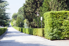 VATICANO 20 DE SETEMBRO: avenida nos jardins do Vaticano o 20 de setembro de 2010 no Vaticano, Roma, Itália Imagens de Stock