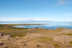 Vatnsnes peninsula in Iceland Stock Images