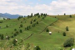 Vatra Dornei landskap Arkivbild