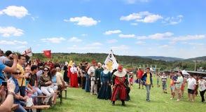 Vatra Moldavien Juni 28, 2015 festivalen flags den medeltida skyen Historiska klubbor Arkivbild