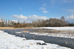 Vattenäng under den ljusa snön Royaltyfri Fotografi