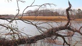 Vattenöversvämningen översvämmar på högvatten, hög kopiering för dynamiskt område arkivfilmer