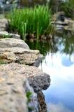Vatten är källan av friskhet Arkivbilder