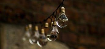 Vatten översvämmad rad av Lightbulbs Arkivbild