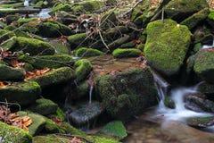 vatten 7 Arkivbild