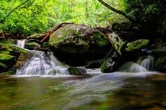Vatten av Catawbafloden i den Pisgah nationalskogen Royaltyfri Fotografi