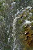 Vatten av floden i berget Royaltyfri Fotografi
