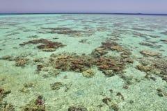 Vatten av tropiska revar Fotografering för Bildbyråer
