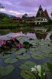 Vatten blommar på bakgrund av hus i Batak stil. Fotografering för Bildbyråer