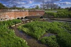Vatten Cress Farm Arkivbild