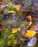 Vatten/färg/ljus Royaltyfri Foto