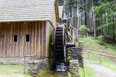 Vatten för den guld- minen maler i Zlate Hory, Tjeckien Royaltyfri Foto