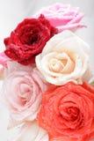 vatten för härliga droppar för bakgrund rose Royaltyfri Bild