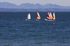 vatten för hav för blå fartygkatt hoby Royaltyfri Fotografi