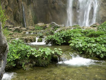 vatten för kaskader ii Royaltyfri Bild