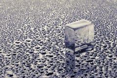 vatten för liten droppeisstycke Royaltyfri Foto