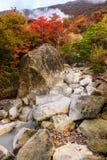 Vatten för naturlig vår på Owakudani med höstsidor Arkivfoton