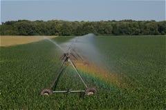 Vatten för växt för konstgjort regn för fältbevattning Arkivfoto