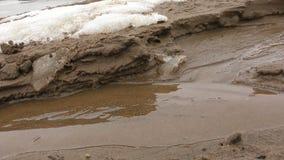 Vatten för vårliten vikis stock video