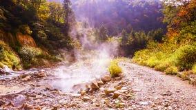 Vatten för varm vår i höstskog royaltyfri fotografi
