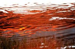 vatten för vektor för modell för bakgrundsfärgillustration seamless Royaltyfri Foto
