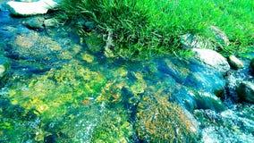Vatten flödar royaltyfria bilder