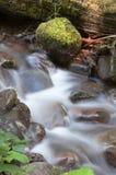 Vatten flödar ner den mossiga bäcken lösa Forest Stream Waterfall Royaltyfria Bilder