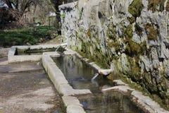 Vatten Fountaining2 arkivfoton