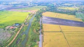 Vatten från fördämningbruk för fullvuxna ris Arkivfoto