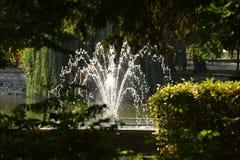 Vatten från springbrunnen Arkivbilder