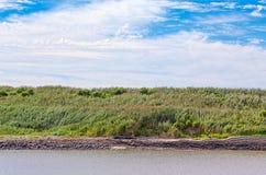 Vatten, gräs och himmel på kustlinjen Arkivfoto